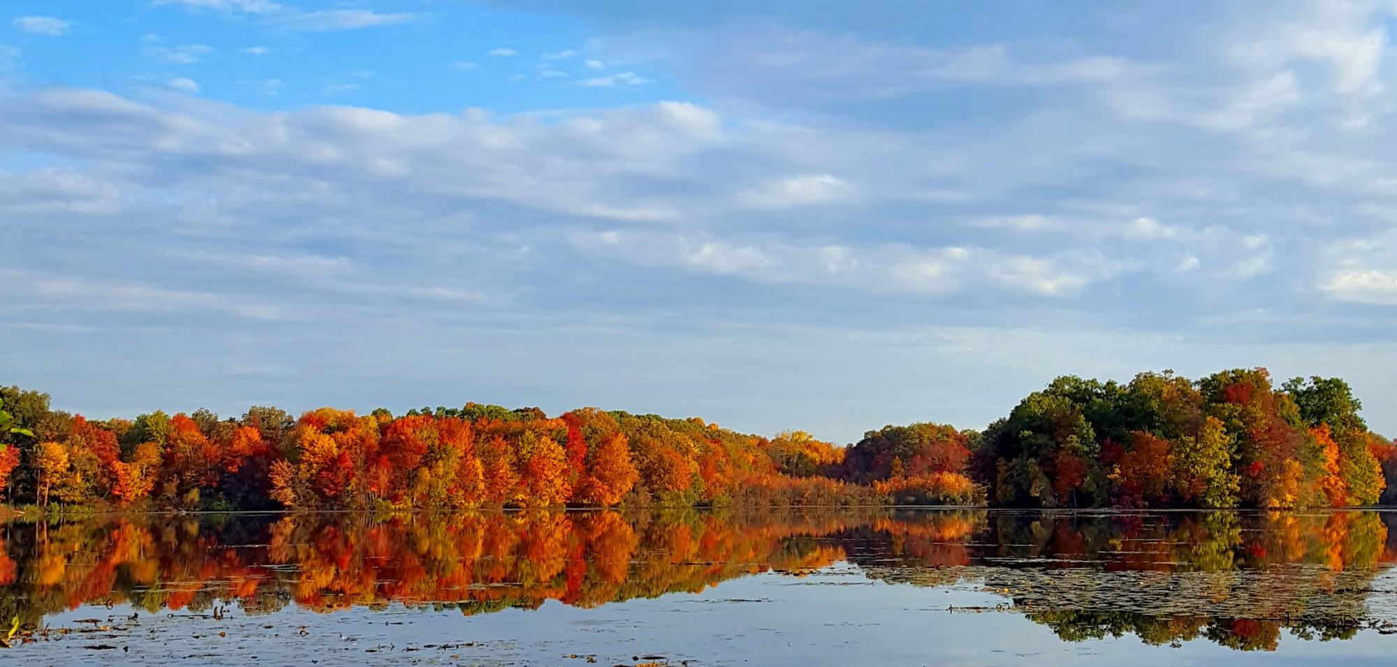 4a54d8243e80 A Little Fall Foliage (And a Lot of Sky) – Aspetuck Walk